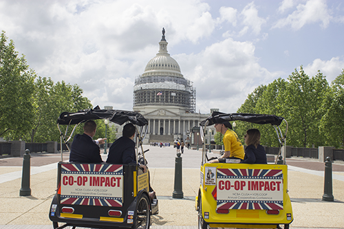 Learn how advocacy work can create an enabling environment for greater co-op impact.