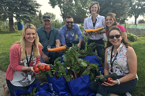 From left: Lindsey Chumley, Bill Baer, Chris Gessele, Tammy Langerud, Lori Goetzfridt and Tracey Krusi are among the volunteers who worked on Basin Electric Power Cooperative's community garden program in 2018. [photo: Tracie Bettenhausen/Basin Electric]