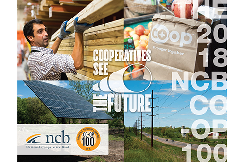 In addition to ranking the top 100 co-ops by revenue, this year's report also highlights how co-ops see their future, echoing the theme of National Co-op Month.