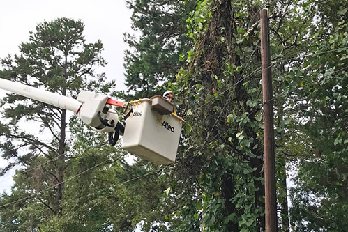 Laurens Electric Cooperative line crews continue clean-up efforts in South Carolina. [photo: John Earl/Laurens Electric]