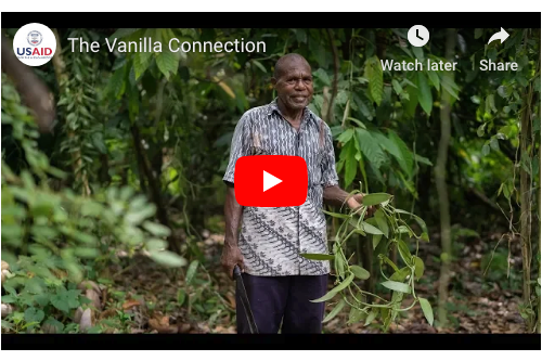The Vanilla Connection: How supporting co-ops in Indonesia is bolstering U.S. jobs